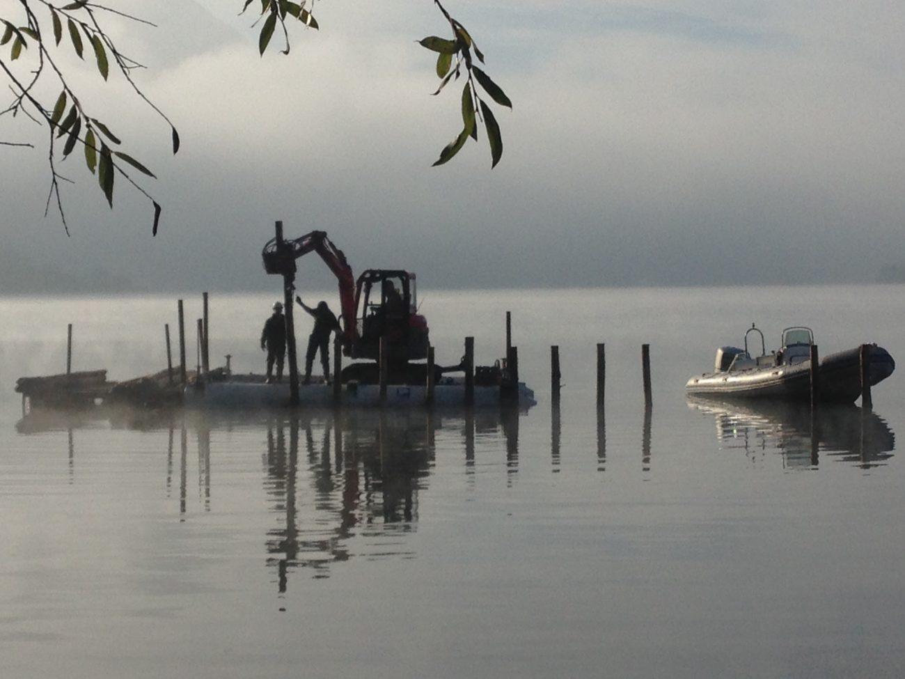 Travaux de piquetage – Protéger la biodiversité du Lac d'Aiguebelette